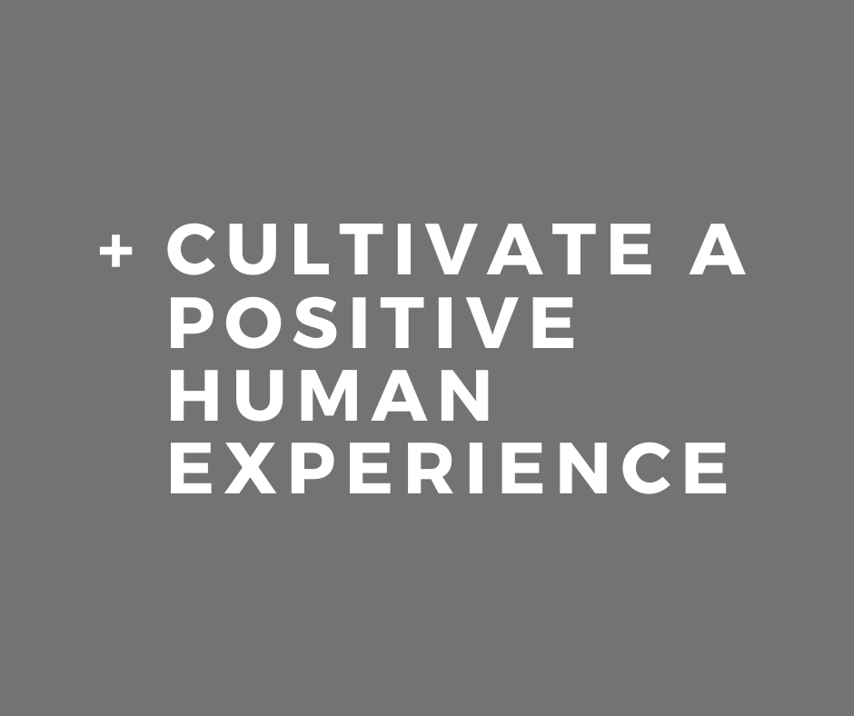 Skidmore Consulting - Positive Human Experience